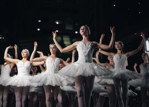 Recherche danseur et danseuse classique professionnel pour spectacle Lac des Cygnes