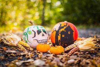 Cherche 8 comédiens H/F pour une animation Halloween en centre commercial